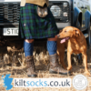 Introducing Kilt Socks UK